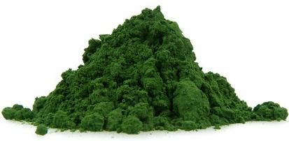 Polvo de Moringa oleifera