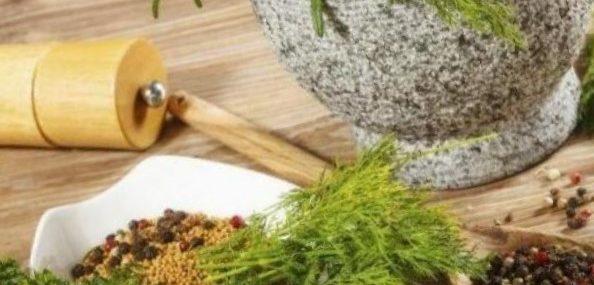 ayurveda-plantas-medicinales